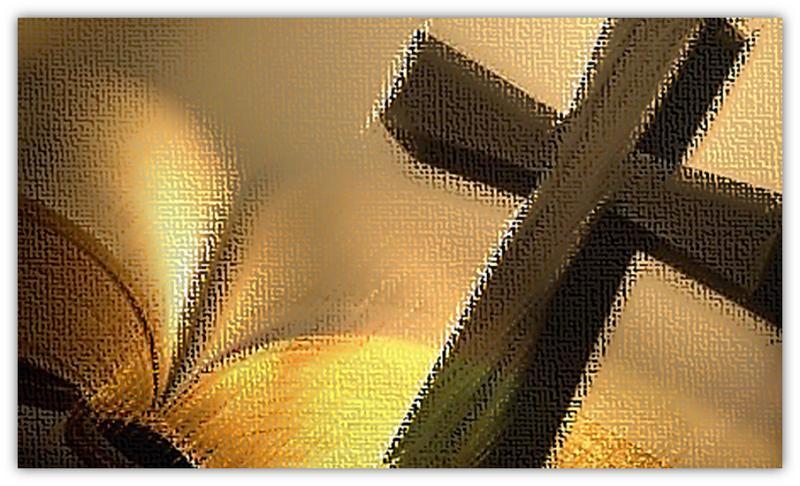 kruis en Bybel