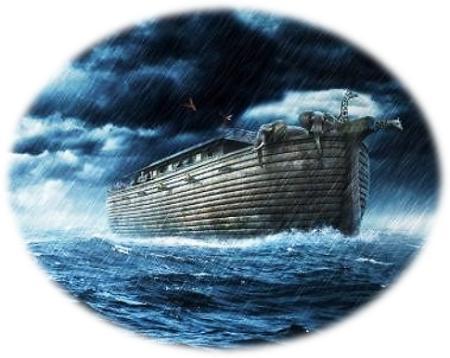ark van Noag