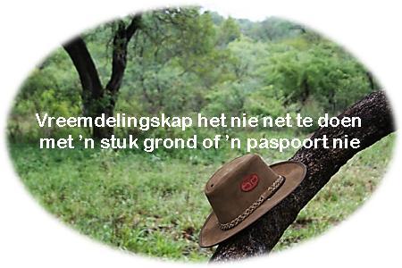 hoed en boom