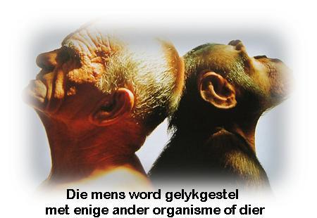 Mens en aap
