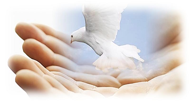 hande en duif