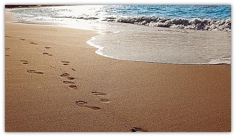 voetspore