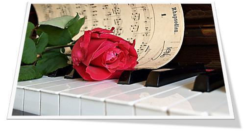 klavier met roos